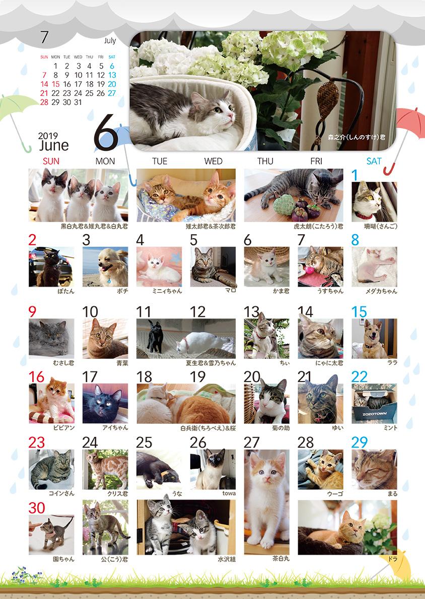 2019年和んで~カレンダー6月